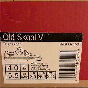Old Skool V Vans